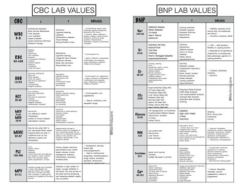 cbc complete blood count bnp nurse chart nursing school