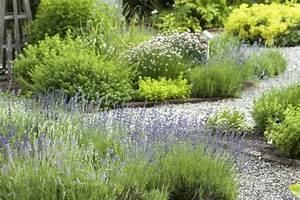 creer une allee de jardin les 5 idees a suivre le blog With comment amenager un jardin 0 allees exterieures comment les amenager travaux