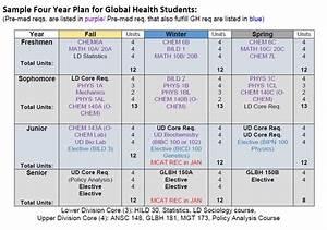 Global Health Undergraduate Major