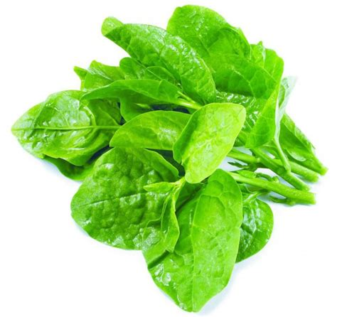 calcium in spinach world healthiest food spinach secretly healthy