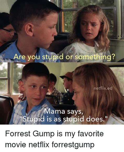 Are You Stupid Meme - are you stupid or something netflix ed mama says stupid is as stupid does forrest gump is my