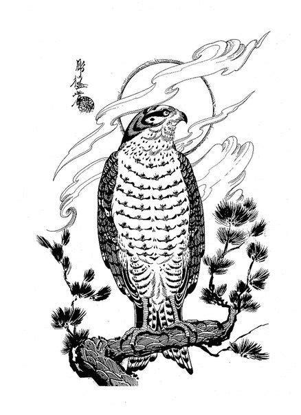 dragons, snakes, birds, skulls Jack Mosher | Tattoo Designs | Pinterest | Skulls, Jack o'connell