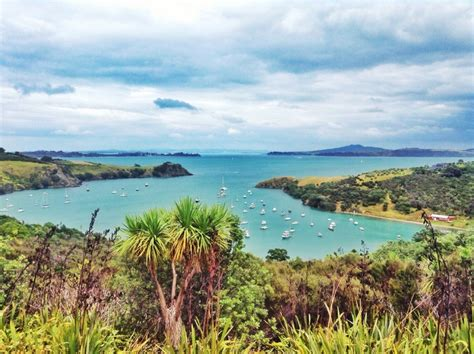 Fishing Boat Hire New Zealand by Auckland Nz Information Marine Directory New Zealand