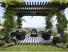 Modern House Beautiful Terrace And Landscape Pergolas The Perfect Route To A Plush Patio Easypave