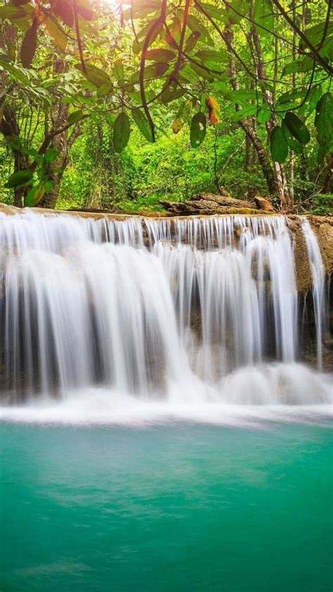 3d Wallpaper Waterfall by Jungle Waterfall Android Phone Wallpaper