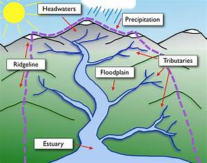 What Is A Watershed And What Does It Consists Of
