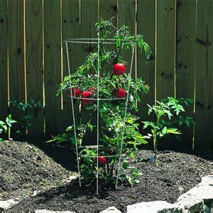 steel tomato cage lowes canada