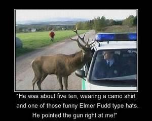 Hunting Humor |... Elk Animal Quotes