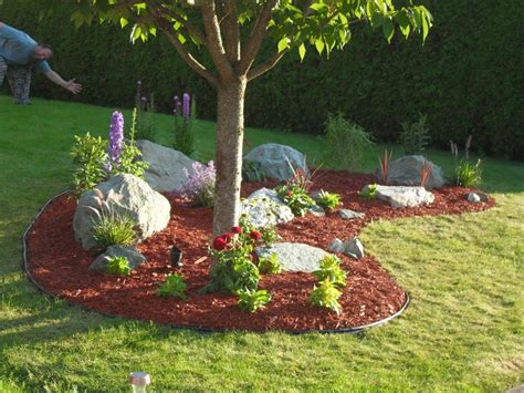 landscaping trees ideas easy diy landscaping build a rock garden rock gardens and easy