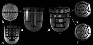 Diffusion Phantom Axial  A  And Coronal  B  T1