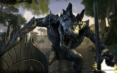 Which Elder Scrolls Online Race Should You Play As