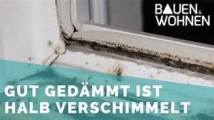 Schimmel Silikon Fenster : schwachstelle fenster schimmel im fensterfalz youtube ~ Eleganceandgraceweddings.com Haus und Dekorationen