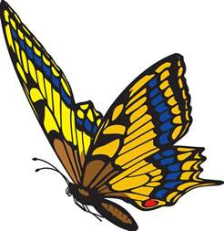 Butterflies Flying Clip Art