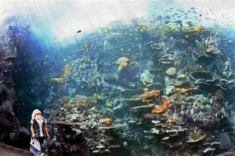 world s largest aquarium at atlanta usa