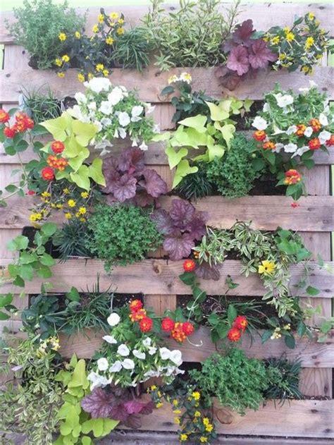 plantes pour mur vegetal exterieur maison design lcmhouse