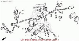 Honda Cb750 Nighthawk 1992  N  Usa Wire Harness