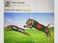 Bangladesh fan drapes India flag around dog ahead of ICC
