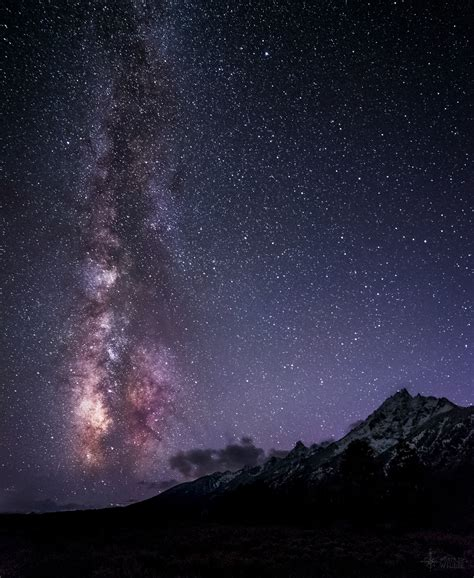 The Night Sky Stars And The Milky Way Where To Willie