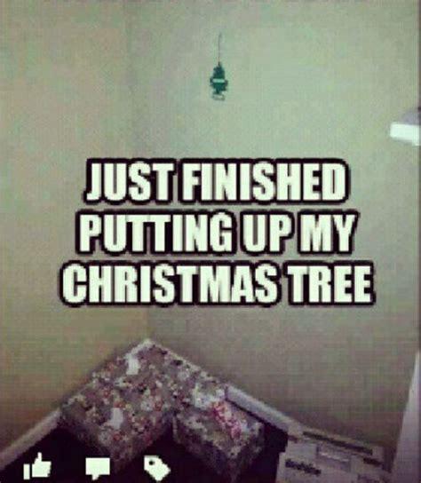 Christmas Tree Meme - christmas trees jokes and memes on pinterest