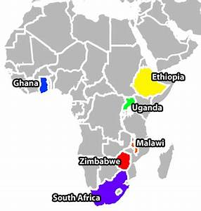 NIMH » Africa Focus on Intervention Research for Mental ...