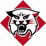 Davidson Wildcats Svg Wikipedia Wikimedia Wiki