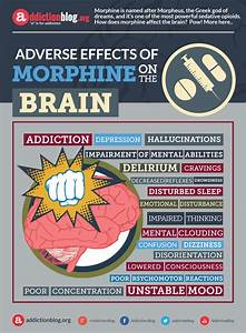 Adverse Or Negative Effects Of Morphine On The Brain