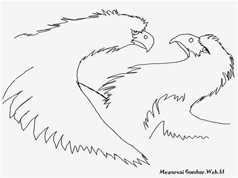 kumpulan gambar kartun kepala burung elang duinia kartun