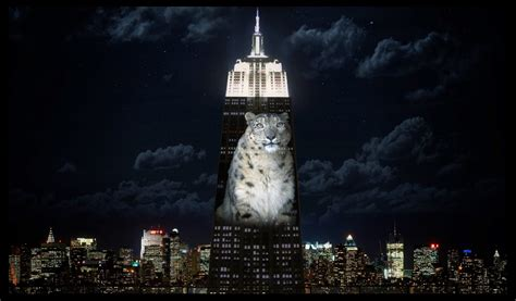 empire state building light show endangered species