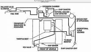 Wiring Diagram  34 2004 Dodge Ram 1500 Evap System Diagram