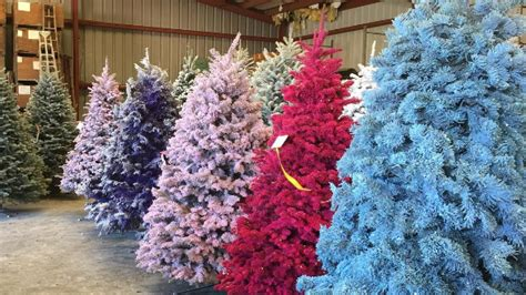 how much does a live christmas tree cost this year colored trees could make your home bright realtor 174