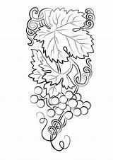 Coloring Uvas Grapes Grape Racimo Dibujos Colorir Colorear Weintrauben Imprimir Printable Bunch Ausmalbilder Hermosa Worksheets Cacho Lindo Parentune A4 Dibujosonline sketch template