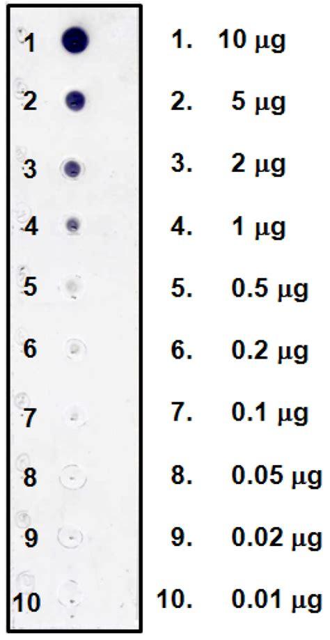 antibodies  full text development  eastern