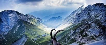Wallpapers 4k Ultra Wide Goat Mountains Desktop