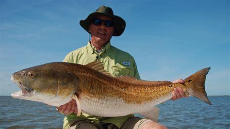 late season big redfish shallow south