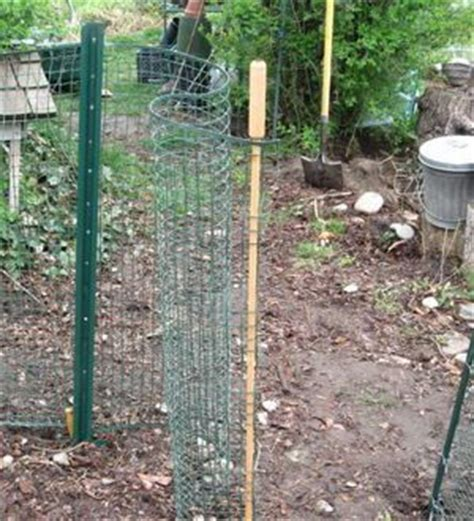 17 best images about vegetable garden fencing on
