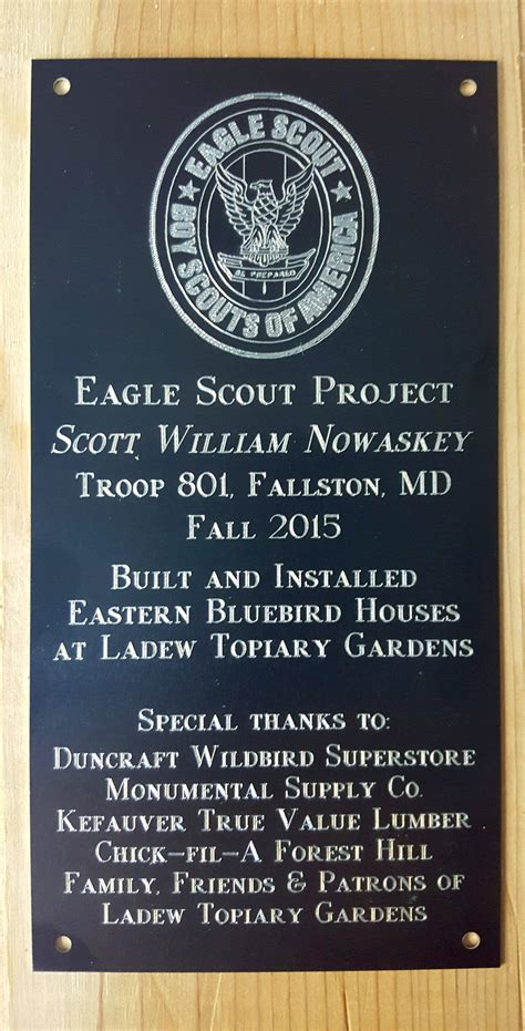 eagle scout project creating  eastern bluebird trail