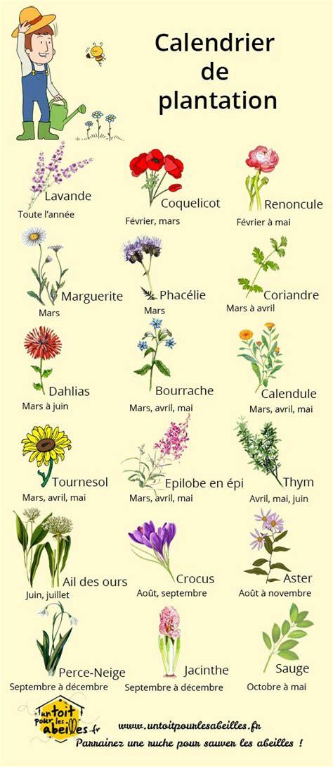 Purple Planter by 17 Meilleures Id 233 Es 224 Propos De Fleurs Sur Pinterest