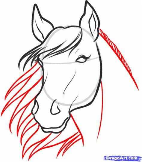 sketch  horse step  step sketch drawing