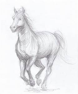 Horse drawing - original pencil drawing OOAK | Pencil ...
