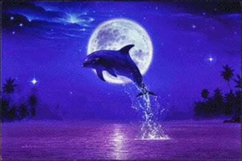delfine gb pics gb bilder gaestebuchbilder facebook