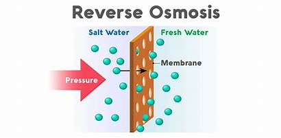 Osmosis Reverse Water Does System Filtration Pros