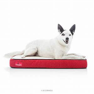 The best chew proof dog beds in 2018 dogs recommend for Puppy proof dog bed