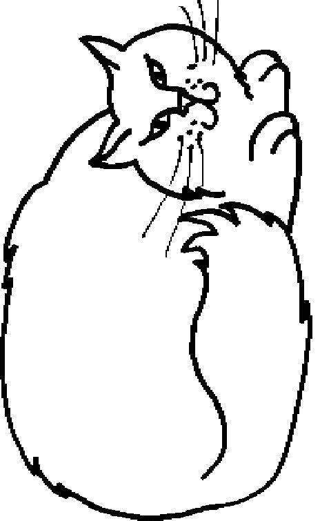 Emoticons Kleurplaten Cat by Kleurplaten Katten Bewegende Afbeeldingen Gifs