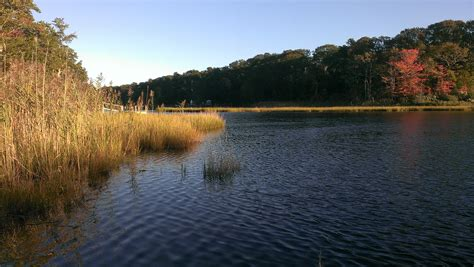 Swimming Holes On Cape Cod That Will Amaze You Harwich