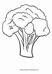 Gemüse Bilder Zum Ausdrucken : ausmalbilder blumenkohl lebensmittel zum ausmalen ~ A.2002-acura-tl-radio.info Haus und Dekorationen