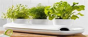 Jardiniere Interieur : une jardiniere revolutionnaire pour plante d 39 interieur a ~ Melissatoandfro.com Idées de Décoration