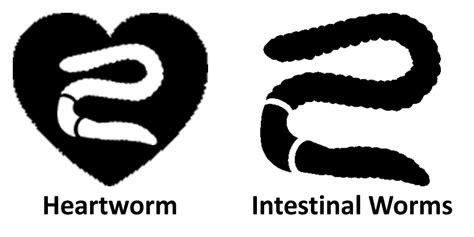 interceptor spectrum