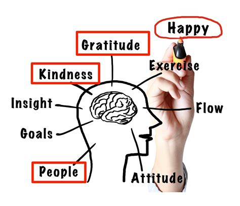 How To Rewire Your Brain For Positivity And Happiness  The Buffer Blog