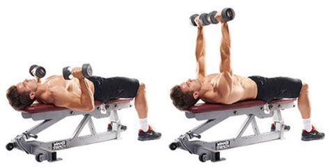 Top 13 Chest Exercises  Surge Fitness Jersey City