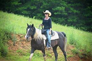 Jayell Ranch 4